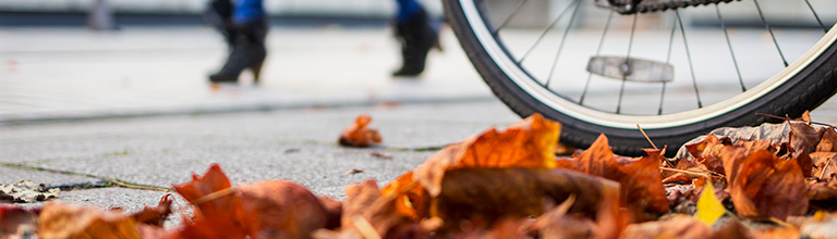 Autumn leaves on the pavement near bicycle tyre